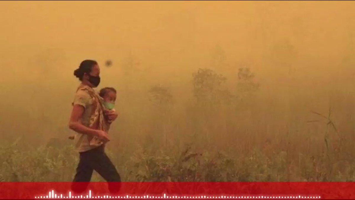 Kulihat Ibu Pertiwi - PIANO COVER by DESAHAN PIANO #FilmBEBAS #KangenDidemoTapiNgacir #NationalBoyfriendDay #NegaraDiambangKehancuran Full Video :) youtube.com/watch?v=DmIslz…