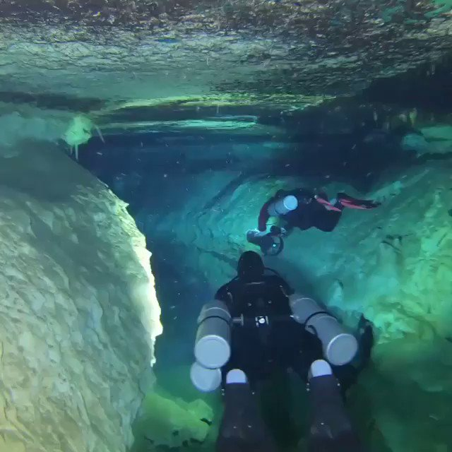 I thought I'd share this with you all... Point of view footage from inside underwater caves in Tulum, Mexico. 🎥 Video by @ducatista66 ...Amazing hey?! 😄👌💕