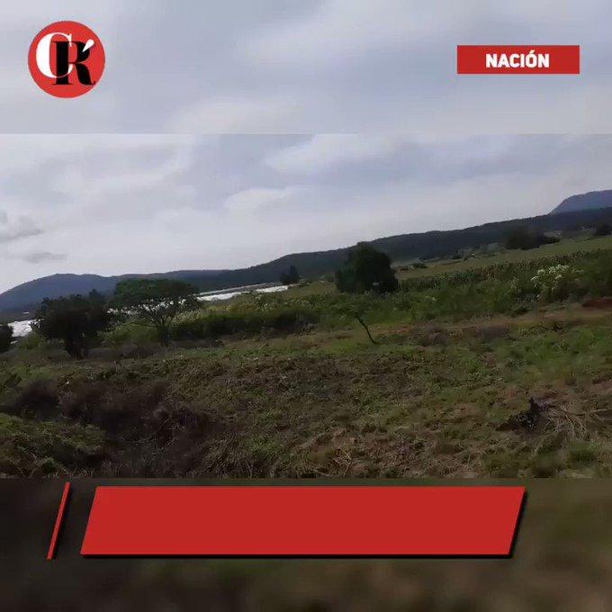 Video insertado