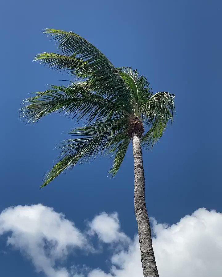 Easy, breezy & beautiful - the weekend is here 🌞 https://t.co/oCBKRDEW8I