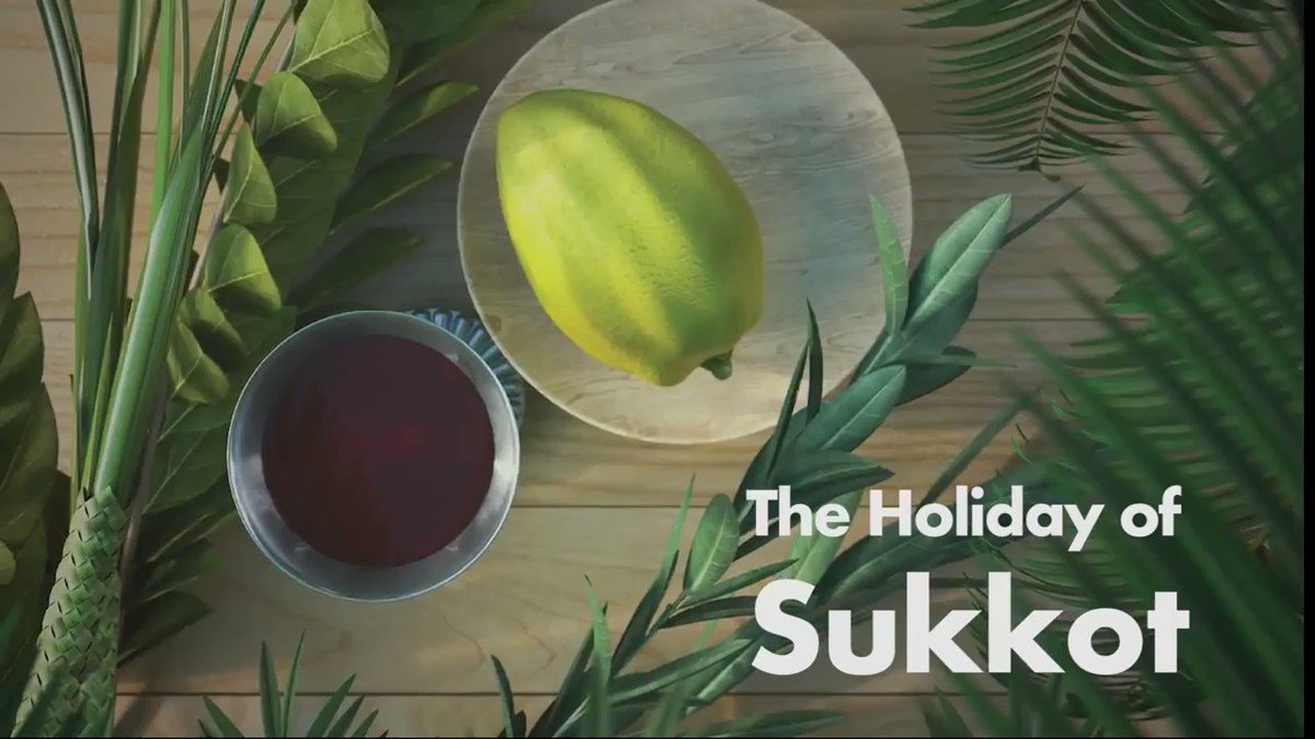 The Meaning of the Holiday of Sukkot Join our free online Kabbalah course >>bit.ly/vp-Kabbalah-Co… #kabbalah #bestowal #love #spiritual #wisdom #spirituality #inspiration #KabbalahRevealed #authentickabbalah #KabbalahInfo #Happy #Sukkot #jewishholiday #holiday #Sukkah