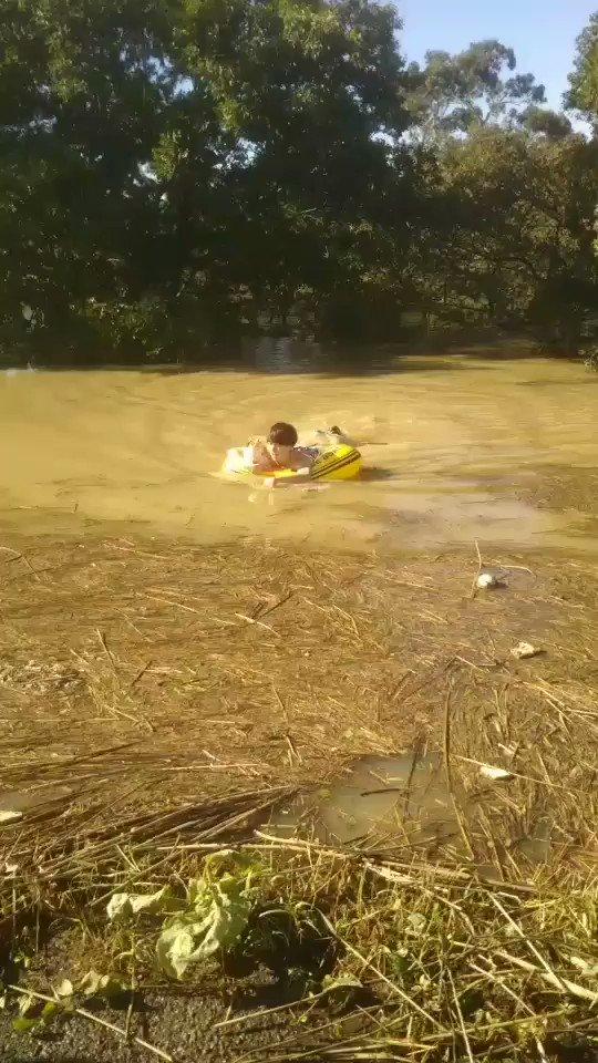川の氾濫に巻き込まれて溺れてる猫たち助けてた、めっちゃいい人達、素敵すぎる。このツイートと猫の恩返しがこの人たちに届きますよう、 #拡散RT希望