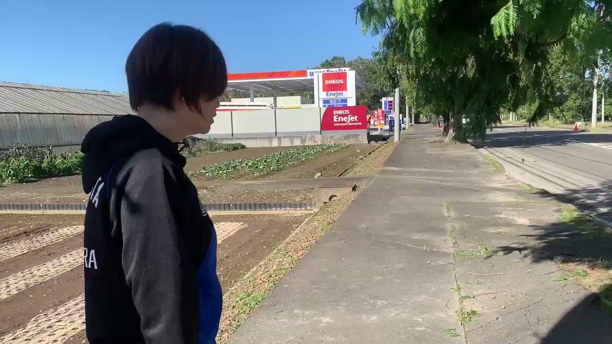 役所曰く、1本撤去60万とのこと。本当にそんなにかかるの⁉️ 内訳明細知りたい危険な街路樹撤去。#小畑きみ子 #鎌田さゆり