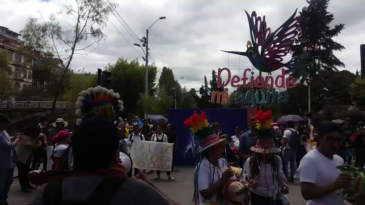 #ATENCIONAhora #MarchaDeColores y #marchaestudiantil se desarrolla pacíficamente en #Cuenca luego de 12 días de #ParoNacionaleEC.