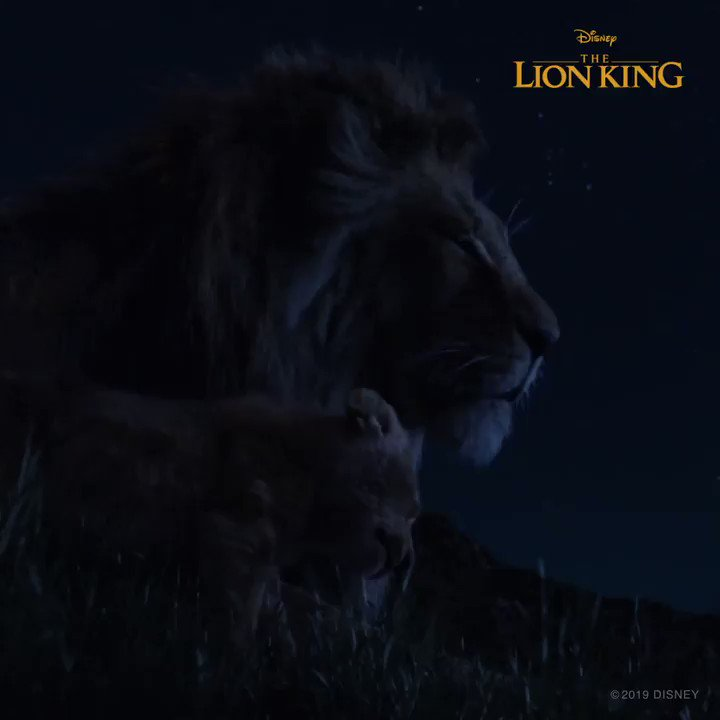 Everything the light touches is your kingdom. #TheLionKing