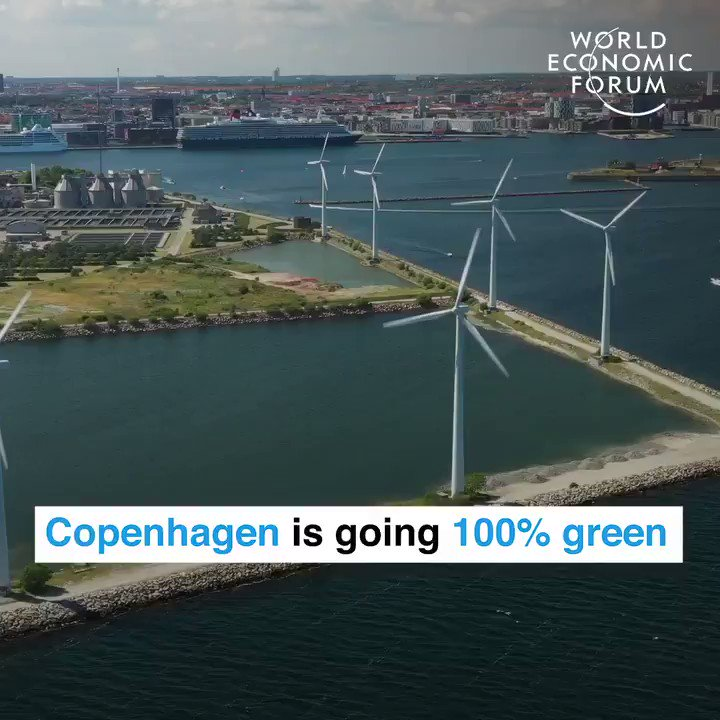 Copenhagen is going 100% green!🇩🇰 A city with more bikes than persons!🚴♀️🚴♂️ #Tiredearth #GreenNewDeal #COP24 #environment #nature #fossilfuels #FFF #XR #FridaysForFuture #schoolstrike4climate #ThursdayMotivation @EliseMason1985 @RebeccaH2020 @Jamesdonovan45