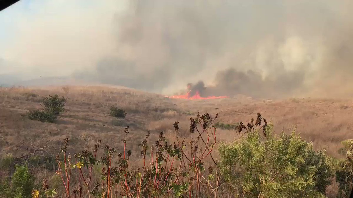 Image for the Tweet beginning: #Realinc fast moving brush fire