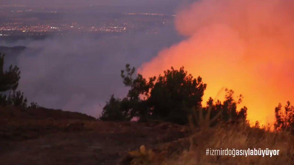 Image for the Tweet beginning: Ormanlarla yanan yüreğimize su serpme