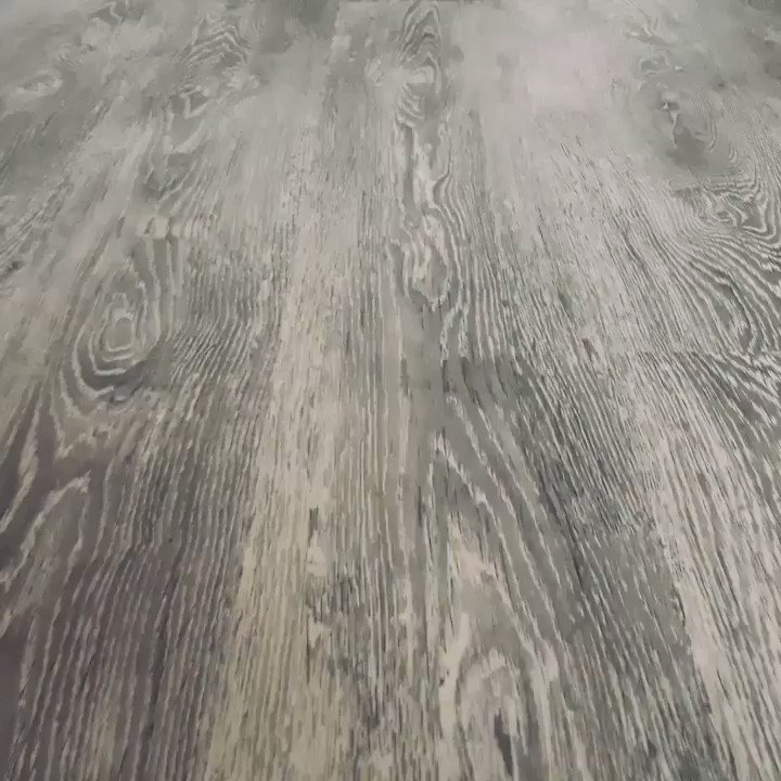 Rise of the Roomba...Join the resistance now.