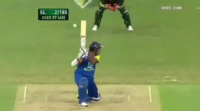 One of The Most Funniest Moment in Cricket 😂 Poor Watson! 😂#Cricket #ShaneWatson #Funny #MichaelClarke #Australia #AUSvSL