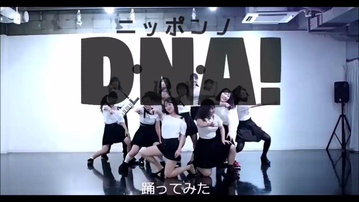 【踊ってみた】BEYOOOOONDS  ニッポンノD・N・A!youtube:nico:ひとそれ以来の #ハロプロ #踊ってみた でした💓びよは見れば見るほど可愛くって何よりエネルギッシュ💫筋肉痛、やばし☺️☺️