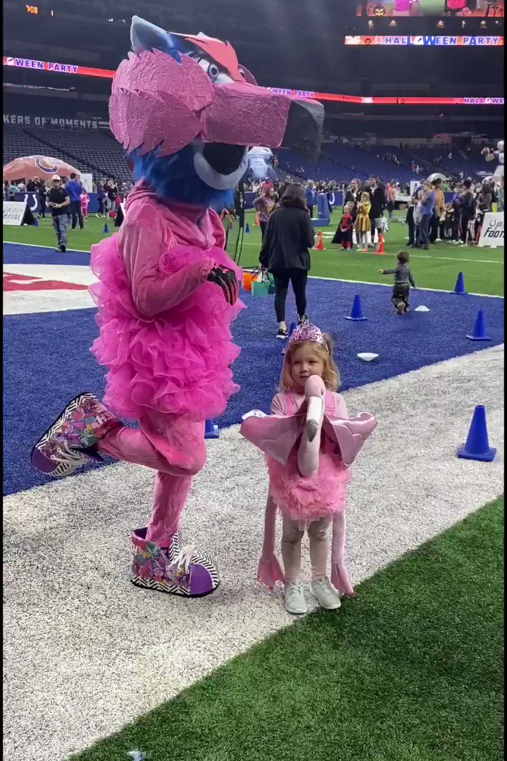 I dressed up like a flamingo to make this girl happy. You can make her happy by voting at colts.com/vote