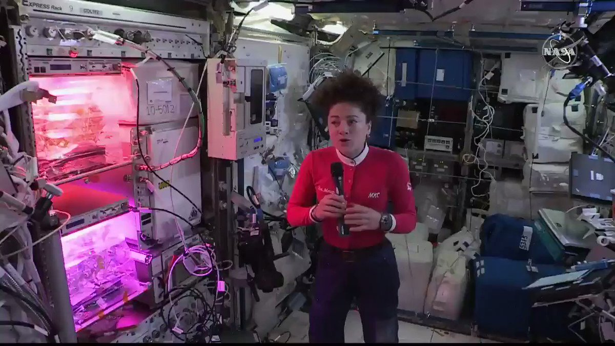 """During today's Earth-to-space call with students at @EARSU39, @Astro_Jesscia shared some valuable advice she learned along the way to becoming a @NASA_Astronauts: """"Never be afraid to take a risk & fail. In the end, it may bring you closer to what you want to do."""""""