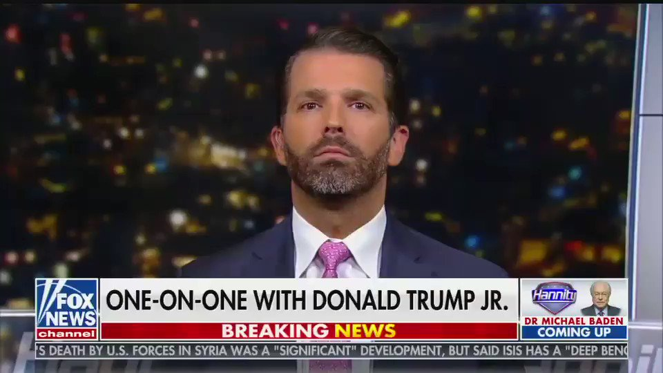 """Actually just said by Donald Trump Jr: """"I wish my name was Hunter Biden. I could go abroad and make millions off my father's presidency. I'd be a really rich guy"""""""
