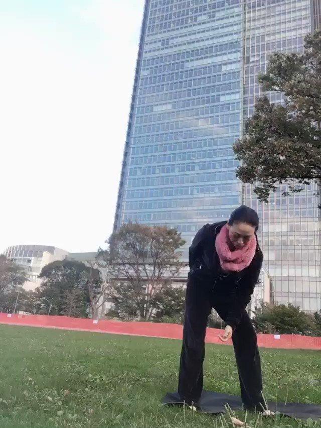 極楽鳥のポーズ🌈Bird of Paradise Pose🌈 「脚を上げるまでの過程を見たいです!」とのリクエスト💌どうもありがとうありがとう😊 極楽鳥花の花言葉は、「輝かしい未来✨」 喜びに満ちた憧れポーズを、 ぜひ、誇り高く決めてくださいね🧚♀️ うらら #ヨガ動画 #東京ミッドタウン #極楽鳥花