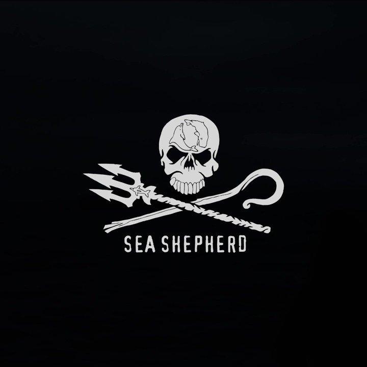 @SeaShepherdSSCS's photo on Flashback Friday