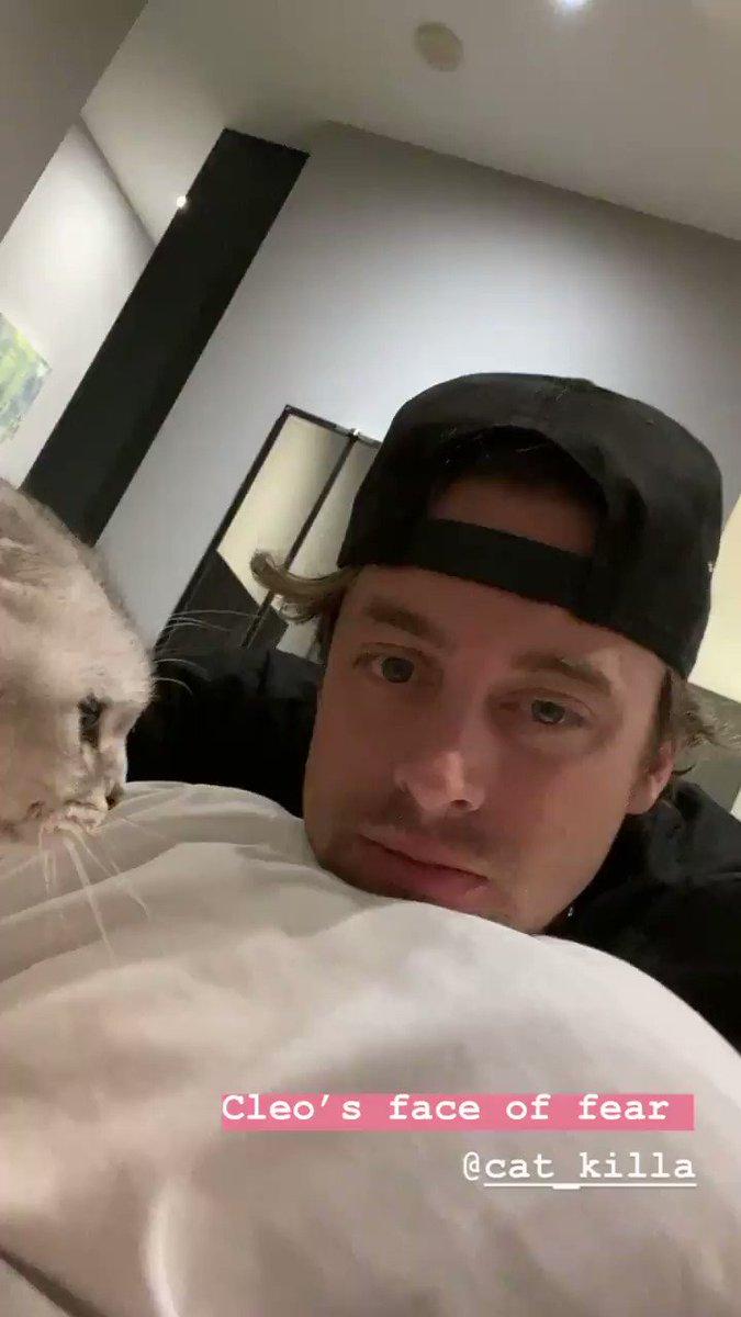 Don't lick my kitty friend...  WOOF!   #kitten #kitty #cutecats #pets