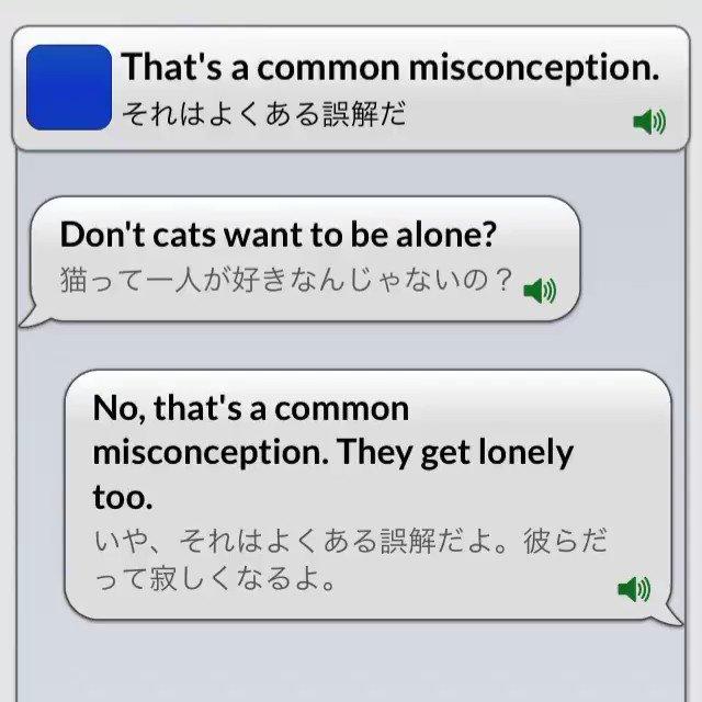 【フレーズ更新】That's a common misconception.それはよくある誤解だ世間一般に知られている誤解に対して使われます。【アプリの詳しい情報はこちらへ】iOSアプリReal英会話 音声付き Android版