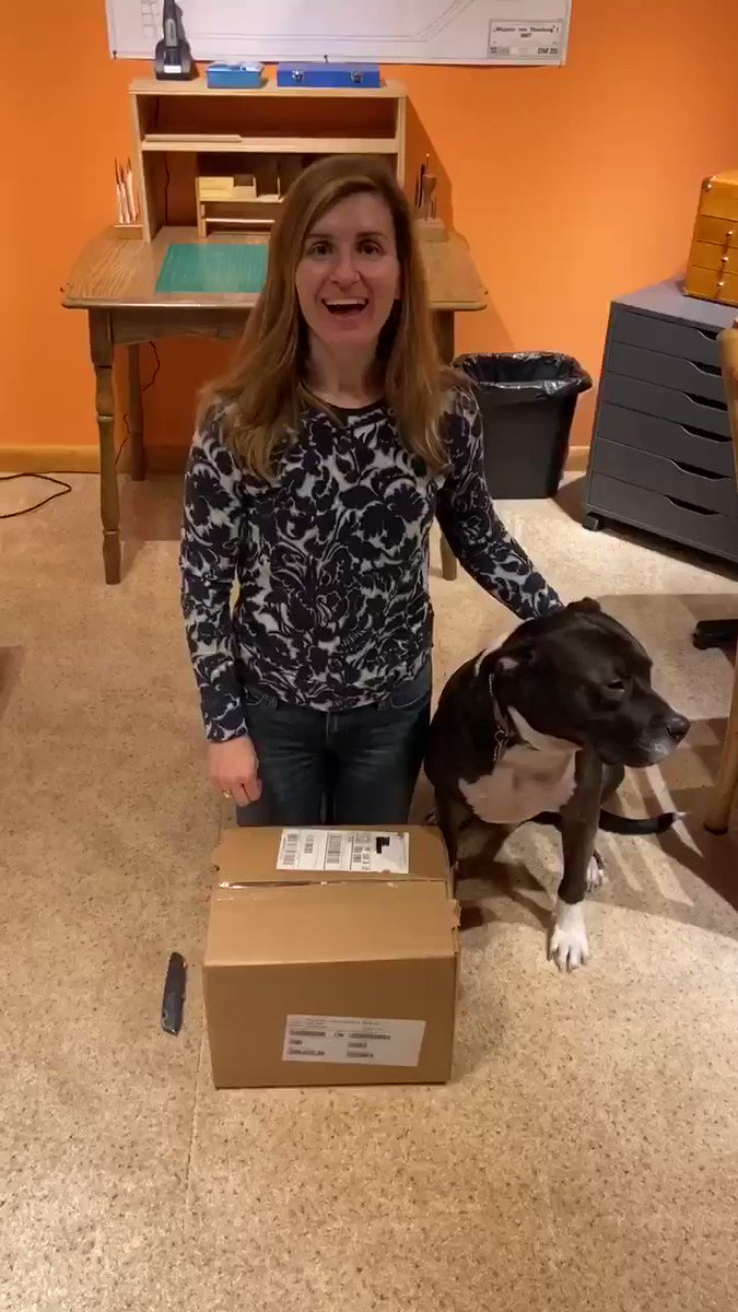 It's #unboxing day!!  And of course Jasper helped  ❤️🐶📚❤️🐶📚 @Bloodhoundbook #ItWasAlwaysYou  Preorders begin Nov 25th!!  #amreading #amwriting #bookstagram   @GillyMacmillan
