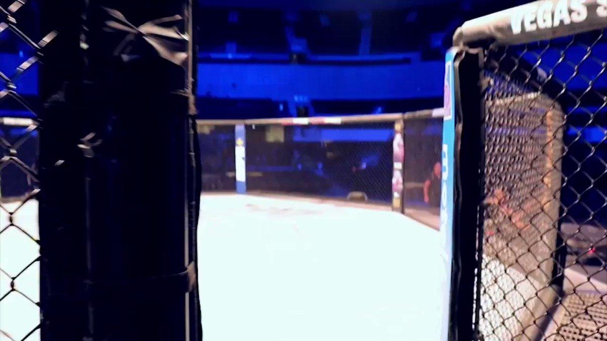 INSIDE UFC TEAM by FOX SPORTS. Check this out! @eriferca @GersonMarlon @mariodelgadorzm