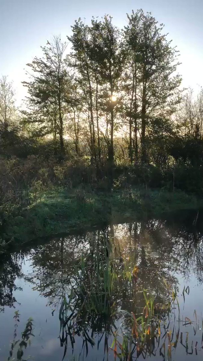 Caenhill CC