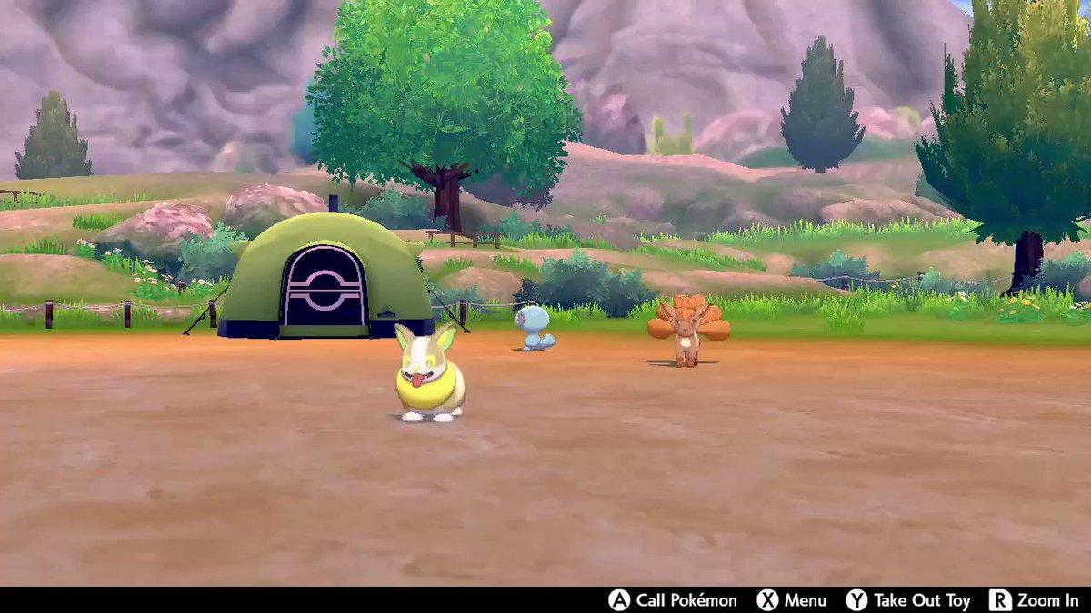 LOOK AT HIM #PokemonSwordShield #NintendoSwitch