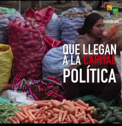 #LaComunaNoticias | Indígenas Del Río Bajo resisten, le dicen NO al golpe de Estado #DictaduraEnBolivia 🇧🇴 @CNNEE @A3Noticias @rtve @amnistiaespana @evoespueblo @EFranLoor @MashiRafael @Pontifex_es @sanchezcastejon @CIDH @informativost5 @NTelevisa_com @Pablo_Iglesias_ @ierrejon