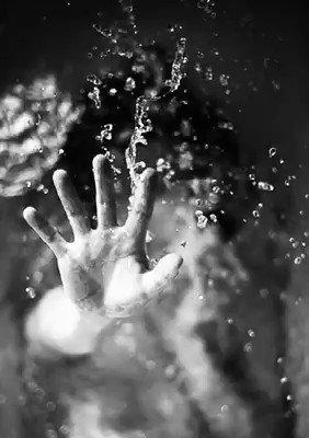 """""""Los sentimientos son lo único en esta vida que no está sujeto a la manipulación Se quiere o no se quiere y nunca se elige, muchas veces queremos a aquellos que menos nos convienen y que más nos pueden herir, pero como diría el señor Tatin, hay que vivir sin miedo"""".Use Lahoz"""