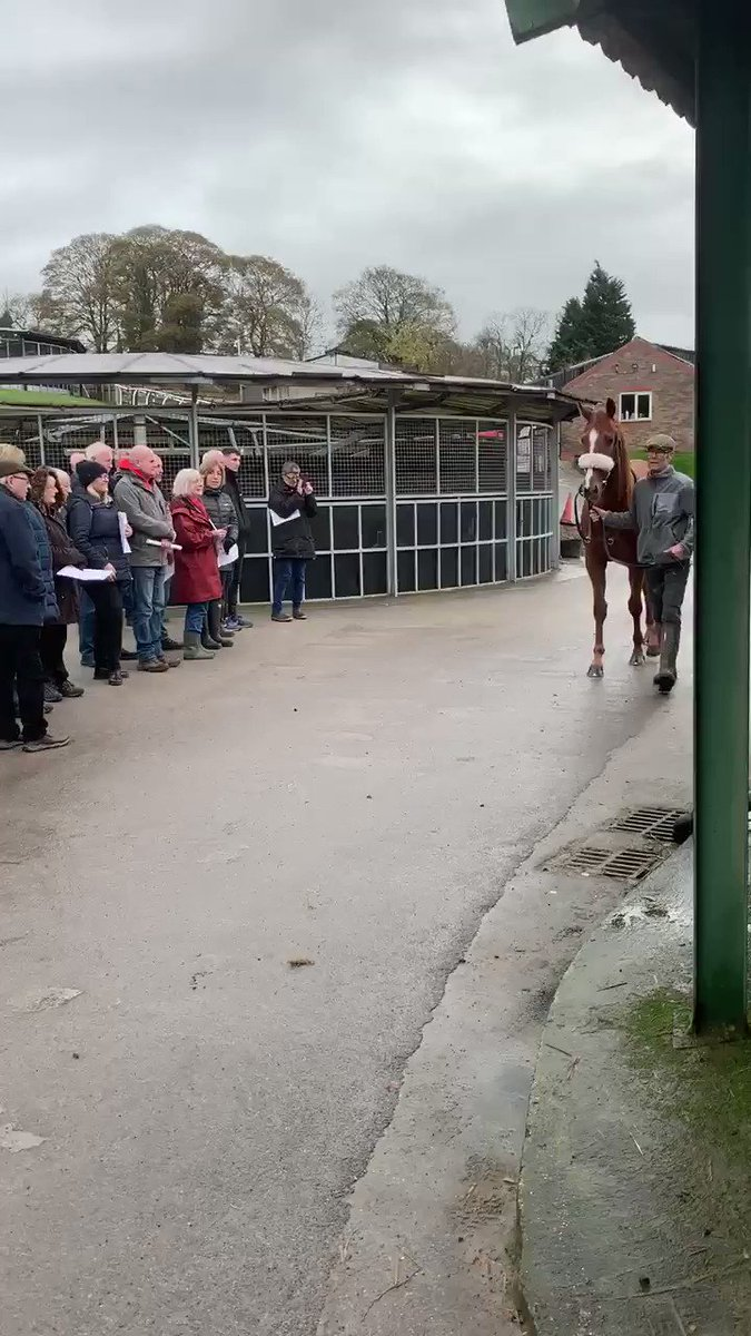 @RFaheyRacinClub Some of the members turning up this morning to have a look at the stock. Not a bad season with 12 winners and over 50% win and place strike rate! One off payment £249 per year. Why not join today 😁