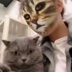 猫と一緒に自撮りした結果?飼い主の顔が豹変してて猫ちゃんビックリ!