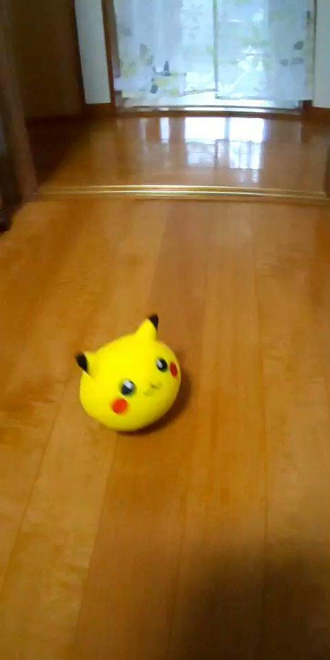 このピカチュウのおもちゃ、狂気じみてて好きwww