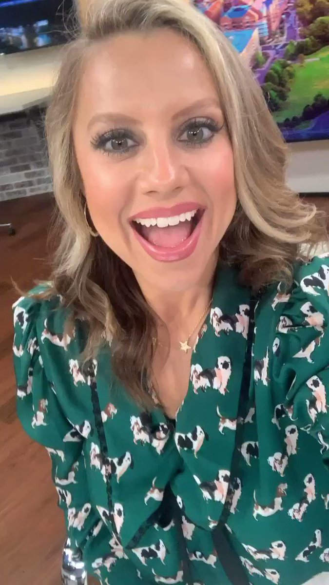 Image result for Abby Ham is an American anchor