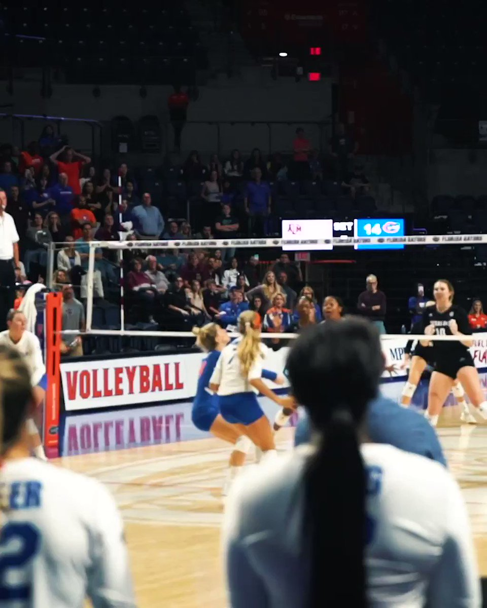 Replying to @GatorsVB: It's Great...To Be...A...well, you know the rest 😏  #GoGators