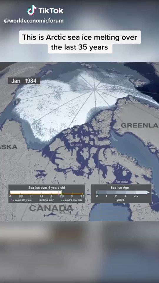 TikTokのworld economic forumのポストから。過去35年の北極の氷の状態を可視化した映像。