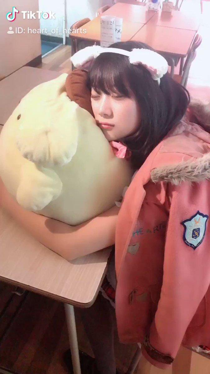 これは…授業中堂々と寝る人ですね…。゚(/□\*)゚。セナ#TikTok#秋葉原#メイドカフェ#メイド喫茶#maidcafe#メイド募集#ハートオブハーツ✔︎HP✔︎YouTube ✔︎TikTok