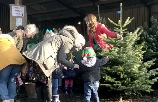 Time to scout out the perfect trees for @family_action pre-schools, before heading back inside for hot chocolate! 🎄