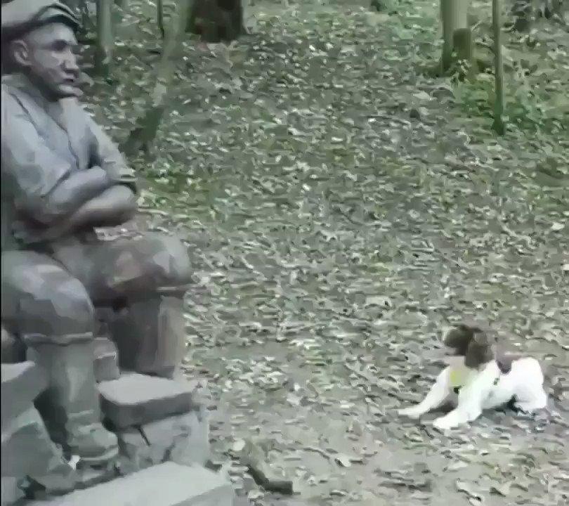 Come on Human....throw it 😳🤣🤣🤣🤣