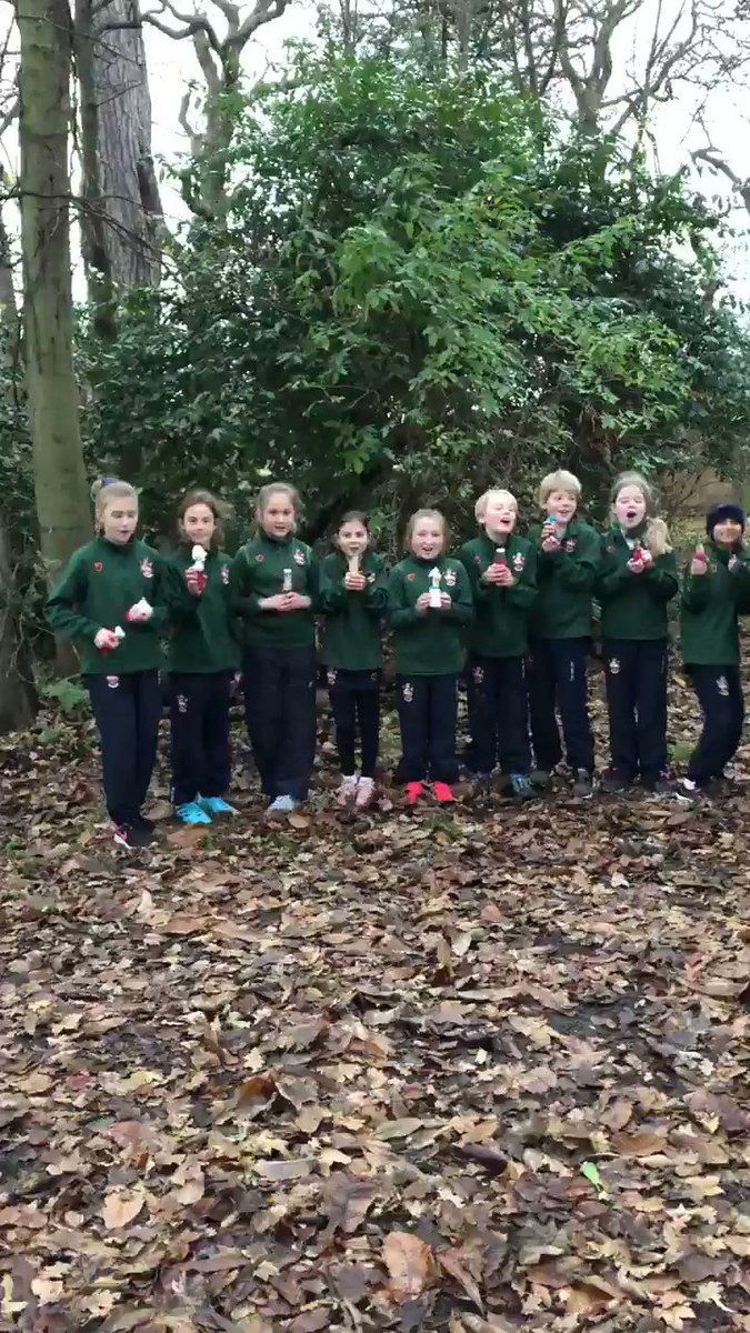 Image for the Tweet beginning: Forest School fun in Jubilee