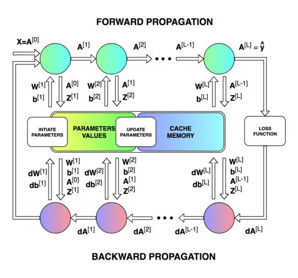 Image for the Tweet beginning: Neural Networks: Feedforward and Backpropagation
