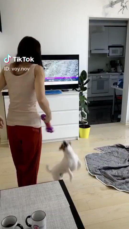 渡す相手がいなくなっているドッキリ📸 voy.nov (TikTok)