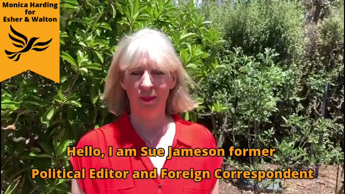Delighted to have the support of Sue Jameson, former Political Editor & Foreign Correspondent. It is between me & #Raab in #EsherandWalton - there are just a few % points between us. Vote for me #GE2019. #VoteTactically @ElmbridgeCons @PeterAshurst @campbellclaret @votefinalsay