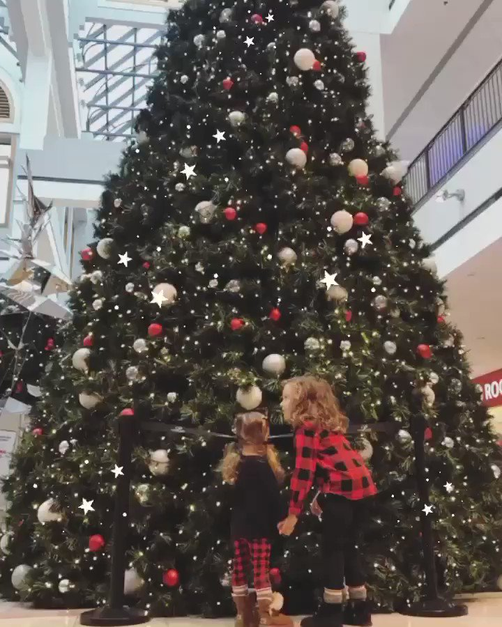 The magic of Christmas 🎄✨