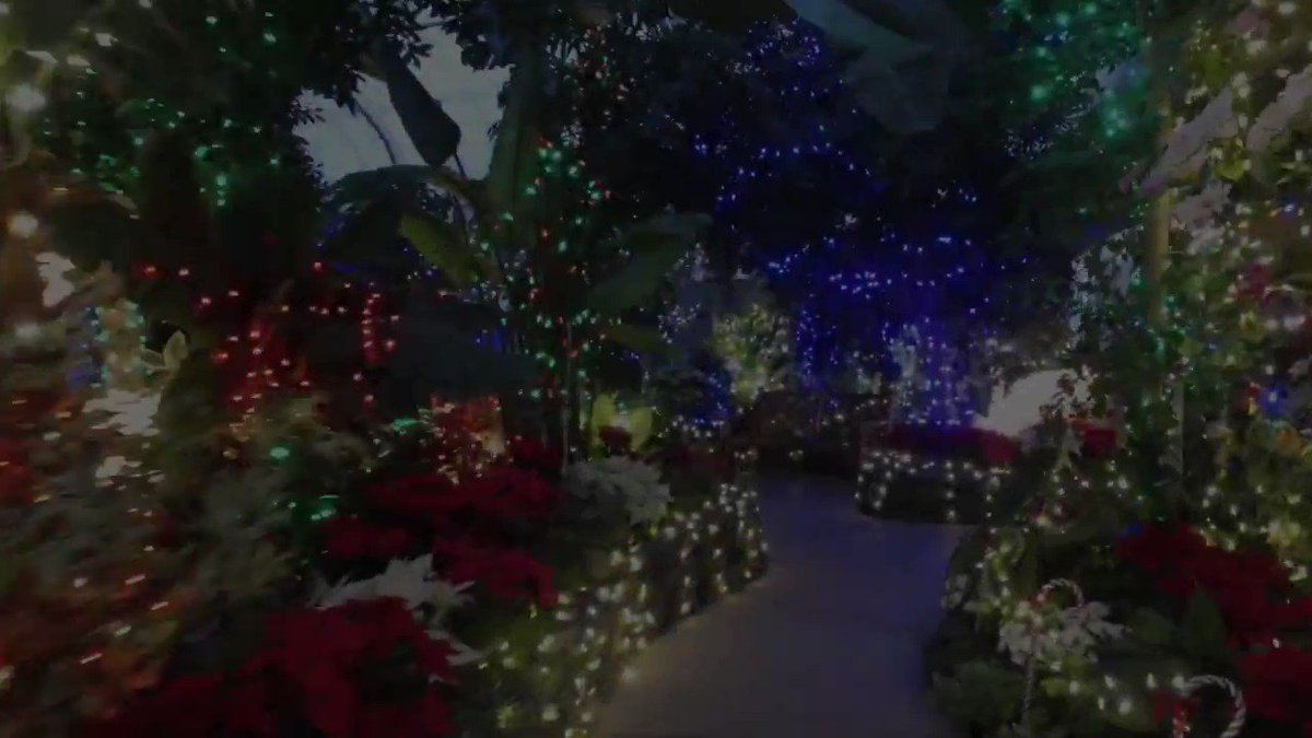 The lights are on in the Gaiser Conservatory at Manito Park in #Spokane. The annual Holiday Lights show starts Friday, Dec. 13, and runs through Dec. 22, noon-7:30 p.m. each day.