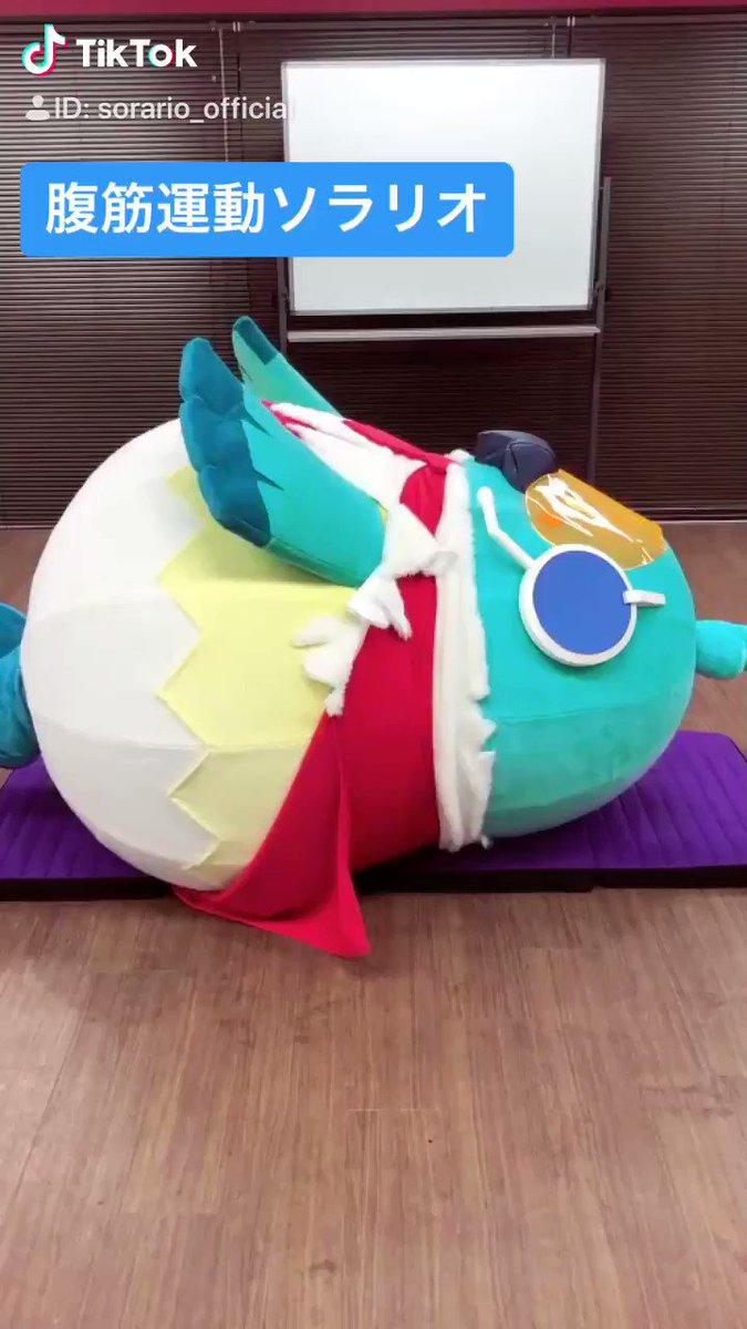 ヒロパのマスコット【ソラリオ】が色々なものに挑戦する #ソラリオチャレンジ 今日は腹筋運動に挑戦ダゼー‼んんんんん!うんんんん!(ゼェゼェ)ど、どうだ!オイラの腹筋綺麗だろー!tiktokはコチラ⇒#ヒロパ #ヒーローズパーク #TikTok
