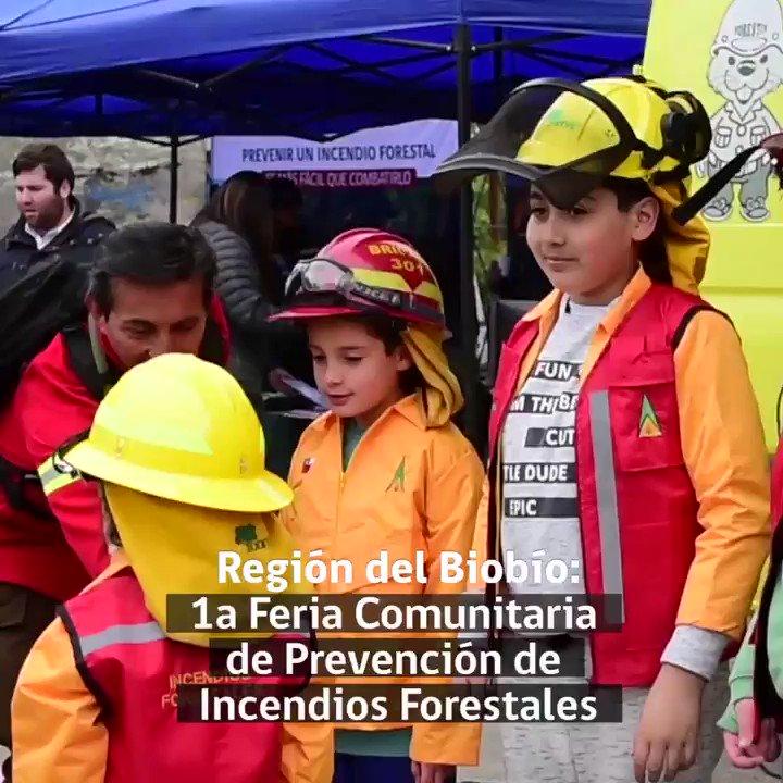 RT @conaf_minagri #CONAFBiobío   Realizamos la 1ra Feria Comunitaria de Prevención de #IncendiosForestales, donde la comunidad conoció la coordinación de distintos organismo para evitar y controlar estas emergencias, junto al municipio de San Pedro de la Paz, @cormachile y @RDPrevencion.