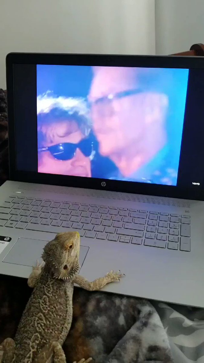 @NikkiSixx This was taken a year ago...I have trained my dragon well. He loves the crue #awwww #turbo #rockon