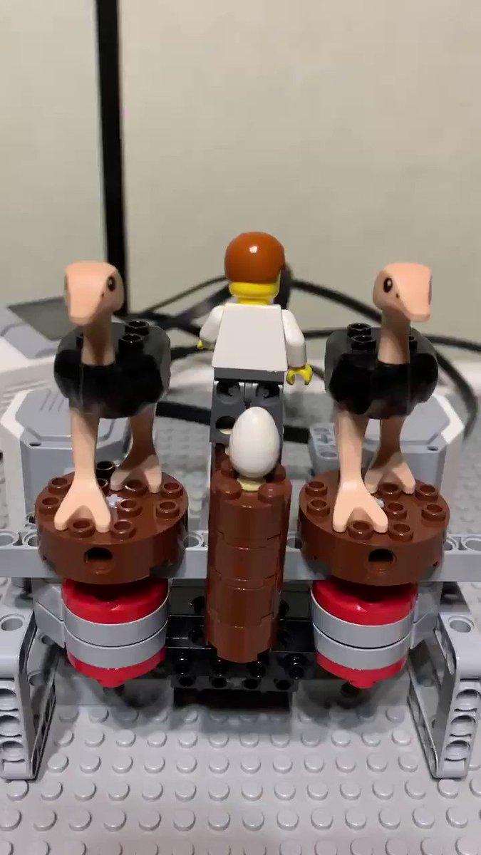 ダチョウの卵を奪う装置、草