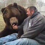 クマと人間は共存できるのか!?熊みたいな男性!