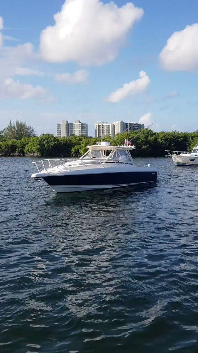 What a great day for a charter. You can choose where you want to go. Book Surfside Charters luxurious 38' Intrepid Power yacht. 🚤 🌊 🇰🇾  | 1-345-516-7873 | charters@surfside.ky #caymanislands #grandcayman #caribbeanlifestyle #darlingescapes #paradiseisland