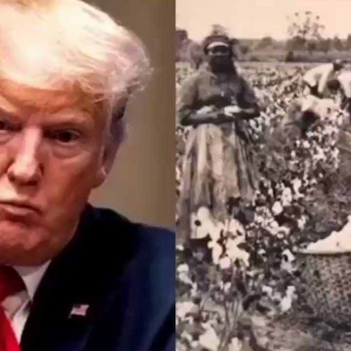 Donald Trump says African American's built this country but wasn't given the proper credit.